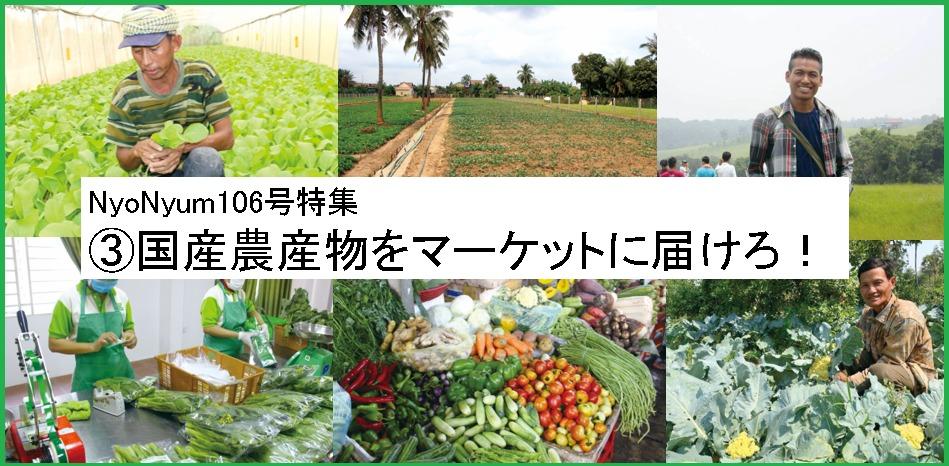 NyoNyum106号特集:③国産農産物をマーケットに届けろ!