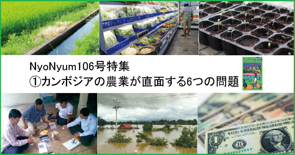NyoNyum106号特集:①カンボジアの農業が直面する6つの問題
